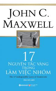 sach 17 nguyen tac vang trong lam viec nhom 185x300 - 11 cuốn sách hay về làm việc nhóm gắn kết và hiệu quả