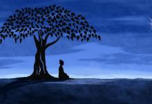 Photo of 9 quyển sách hay về nguồn gốc Phật Giáo cung cấp thông tin khái quát và chuẩn mực
