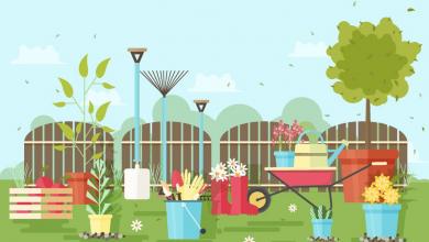 Photo of 15 cuốn sách làm vườn hay rất gần gũi và cần thiết trong cuộc sống hàng ngày