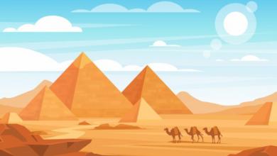 Photo of 5 quyển sách hay về kim tự tháp dẫn lối bạn tới các di tích lịch sử