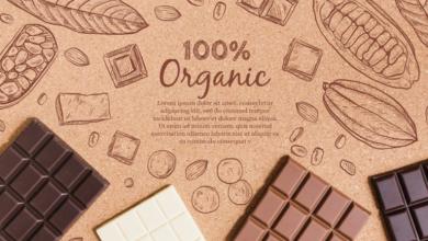 Photo of 5 quyển sách hay về Chocolate đầy thú vị và ngọt ngào