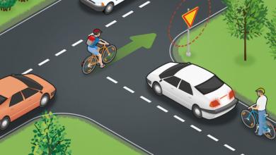 Photo of 5 quyển sách hay về an toàn giao thông cần thiết cho mọi độc giả