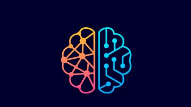 Photo of 5 quyển sách hay về não phải não trái đầy khám phá và thú vị
