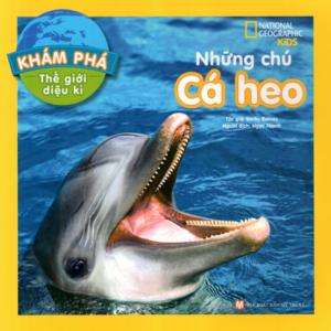 Khám Phá Thế Giới Diệu Kì – Những Chú Cá Heo